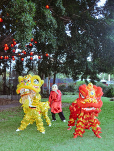 Lion Dance at the Nest Media Preview 2016